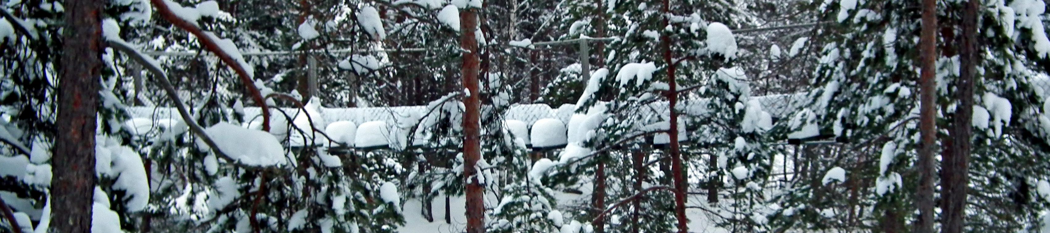 Loistavat talviretkeilymahdollisuudet Repovedellä